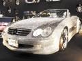 D.A.D LS Edition BENZ SL600 シルバーエディション